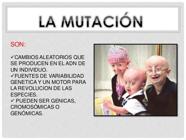 Mutacion, Sindromes y Enfermedades Geneticas en Humanos  Slide 2