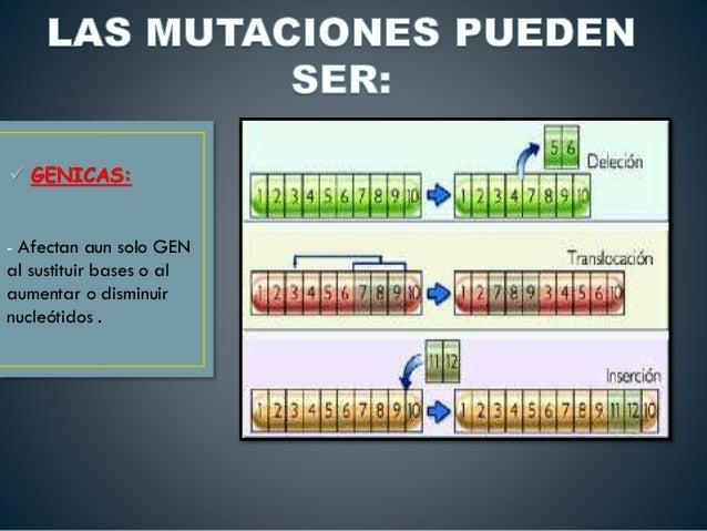 Mutacion, Sindromes y Enfermedades Geneticas en Humanos  Slide 3