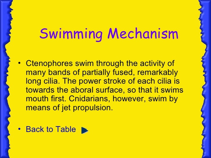 Mechanism and Mode         of Food capture• The tentacles of ctenophores can be  completely retracted into proximal pits  ...