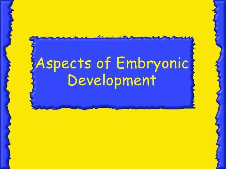 Ctenophore Diversity