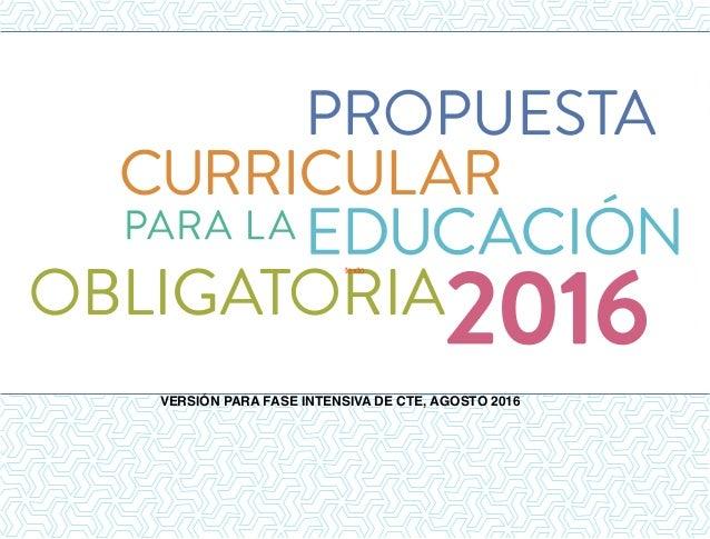 texto VERSIÓN PARA FASE INTENSIVA DE CTE, AGOSTO 2016