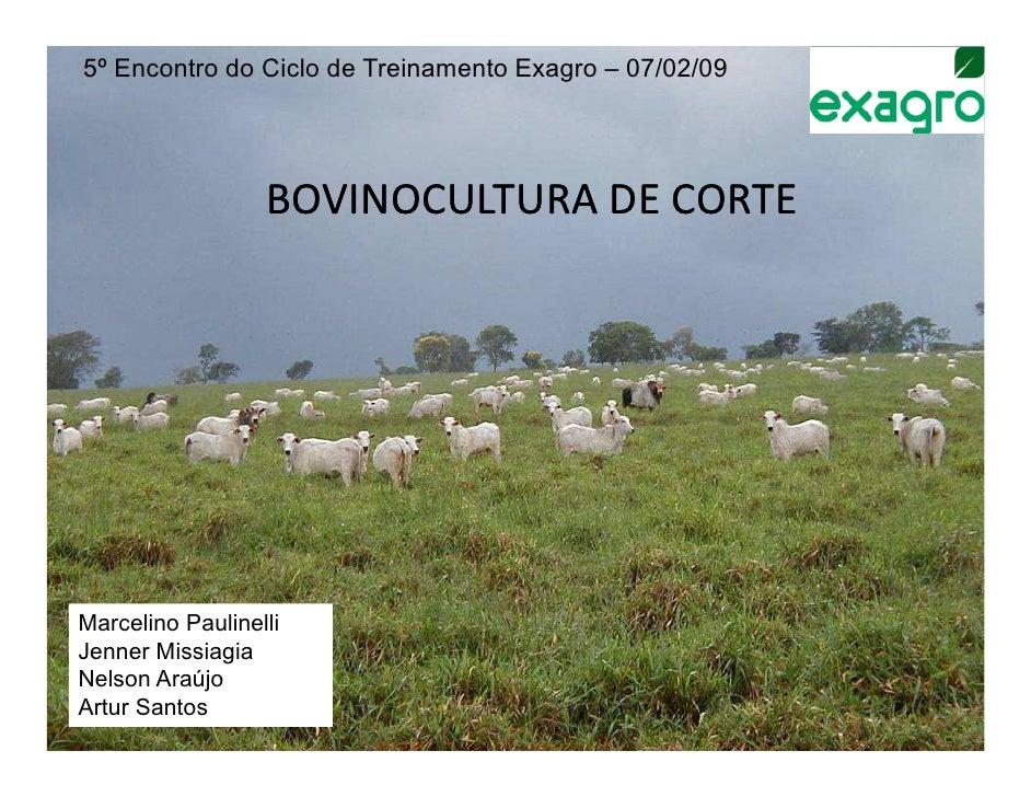 5º Encontro do Ciclo de Treinamento Exagro – 07/02/09                  BOVINOCULTURA DE CORTEMarcelino PaulinelliJenner Mi...