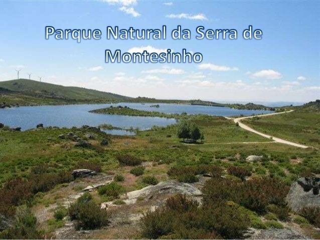  Localização Relevo Clima Hidrologia Fauna Flora Habitats naturais e povoações Património Cultural e Histórico Po...