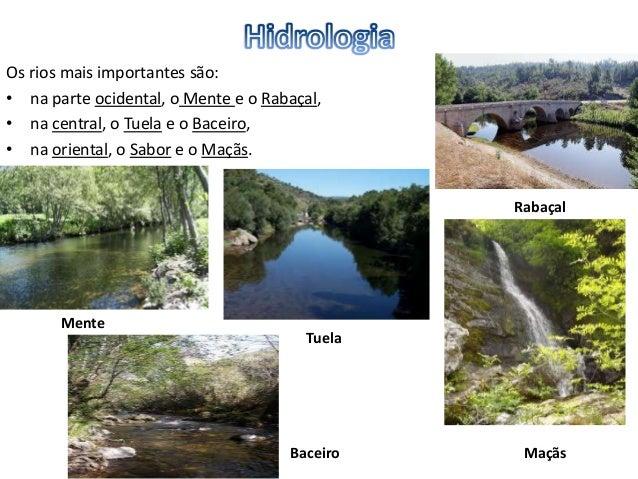 • O rio Sabor é um rio que nasce na serra de Gamoneda, na província de Zamora(Espanha), entra em Portugal, atravessando a...