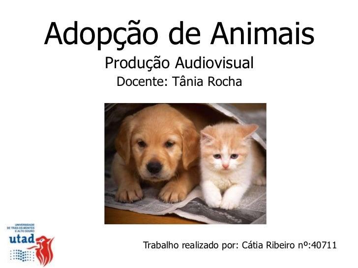 Adopção de Animais    Produção Audiovisual     Docente: Tânia Rocha         Trabalho realizado por: Cátia Ribeiro nº:40711