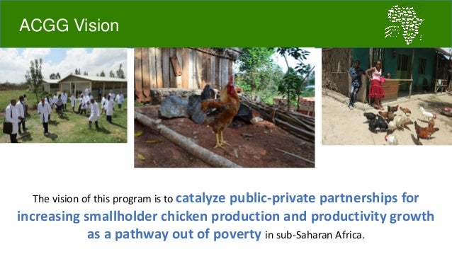 Challenges and opportunities for improved tropical poultry