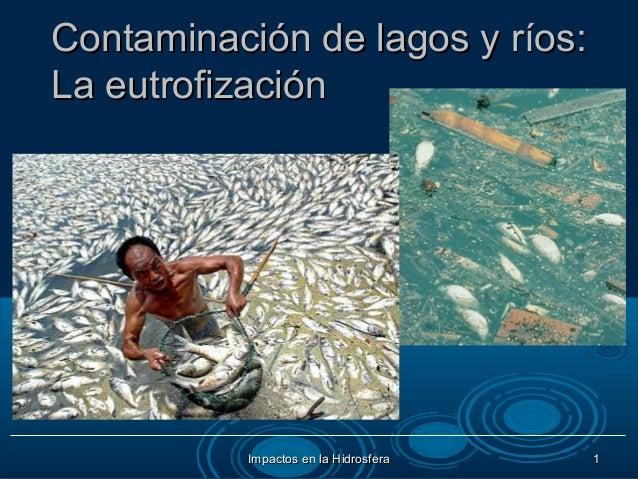 Contaminación de lagos y ríos: La eutrofizaciónEn los lagos el proceso de contaminación es mas grave por que la dinámicade...