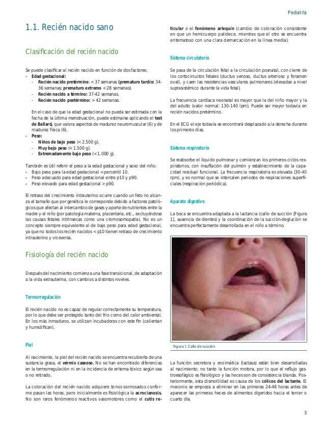 Pediatría Cribado clínico del recién nacido  Eritema tóxico del recién nacido  A todos los recién nacidos se les debe real...