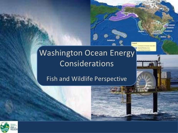 Washington Ocean Energy  Considerations Fish and Wildlife Perspective