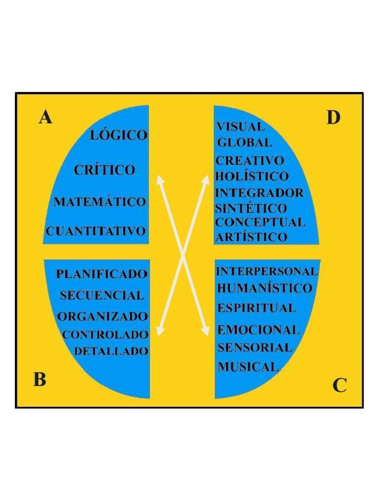 PERFIL RESULTANTE 1 - 2 - 3 -3 (Persona con habilidad alta en el cuadrantesuperior izquierdo, y secundaria en el inferior ...