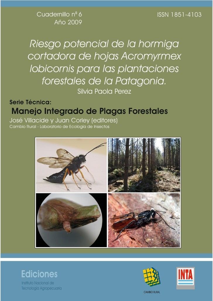 Cuadernillo n° 6                         ISSN 1851-4103                  Año 2009         Riesgo potencial de la hormiga  ...