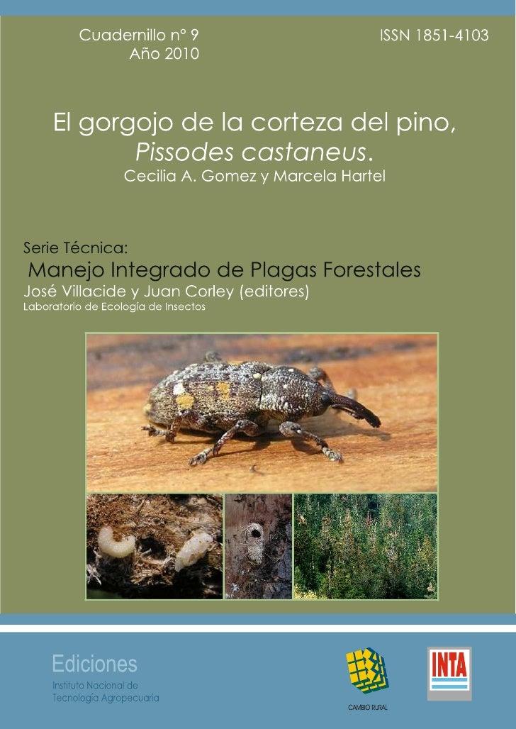 El gorgojo de la corteza del pino,               Pissodes castaneus.Cecilia A. Gomez* y Marcela Hartel**Cátedra de Zoologí...