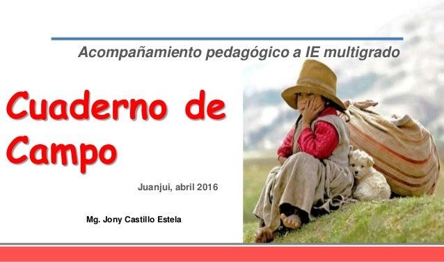 Acompañamiento pedagógico a IE multigrado Cuaderno de Campo Mg. Jony Castillo Estela Juanjui, abril 2016