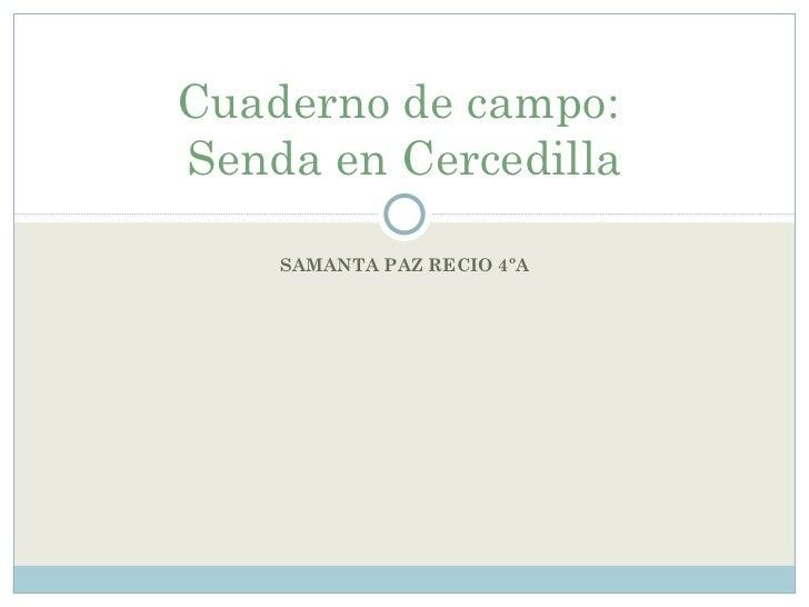 SAMANTA PAZ RECIO 4ºA Cuaderno de campo:  Senda en Cercedilla