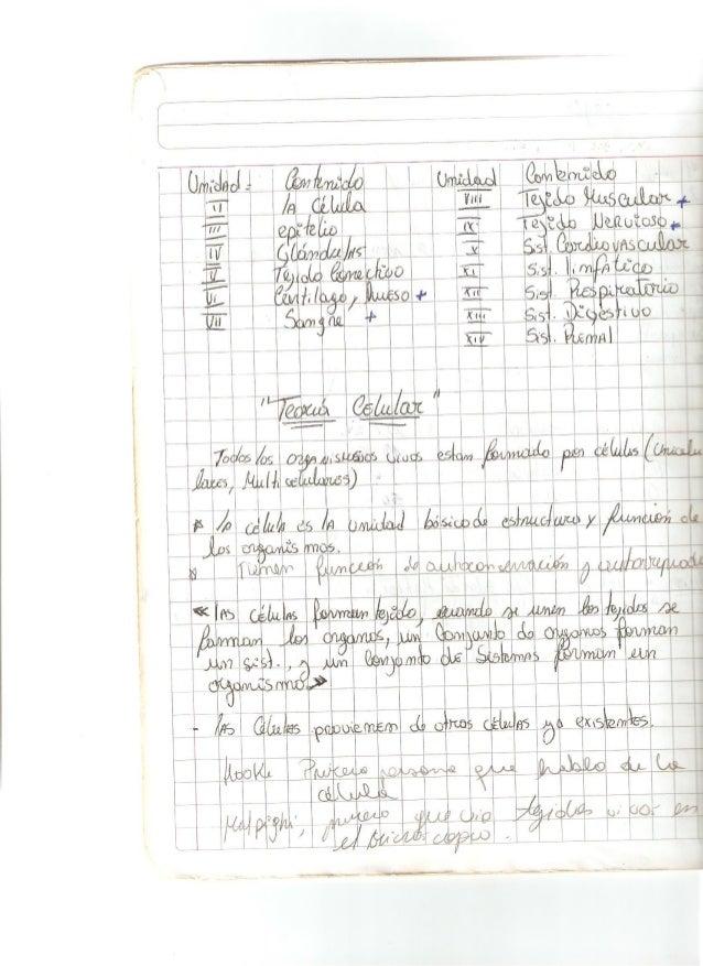 Cuaderno en pdf