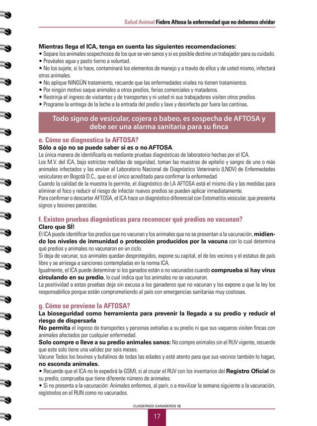 18 Salud Animal Fiebre Aftosa la enfermedad que no debemos olvidar PRIMER SEMESTRE DE 2015 No mezcle los animales nuevos c...
