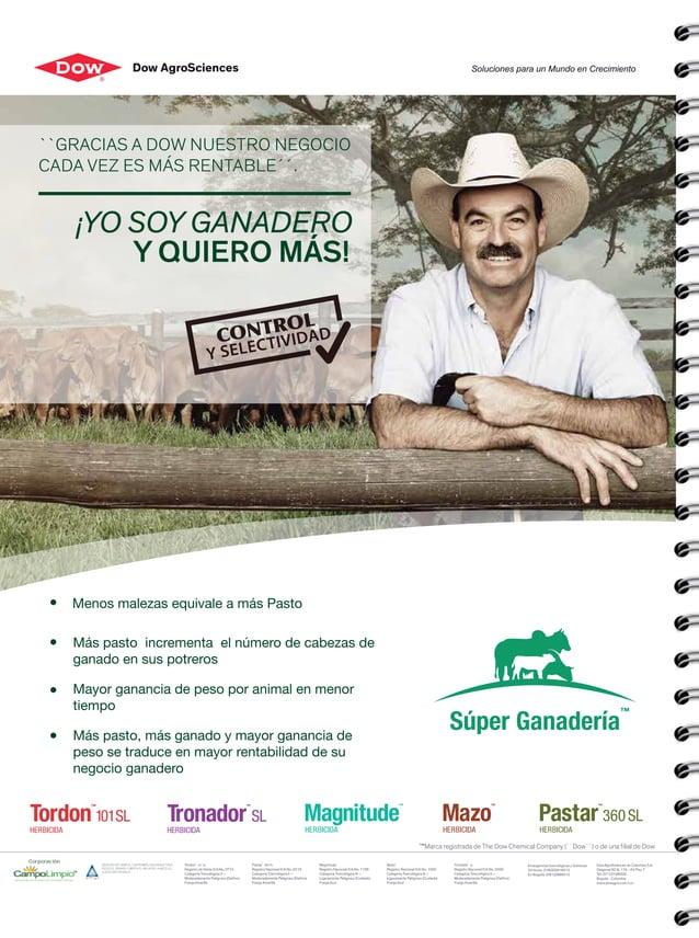 Menos malezas equivale a más Pasto Más pasto incrementa el número de cabezas de ganado en sus potreros Mayor ganancia de p...
