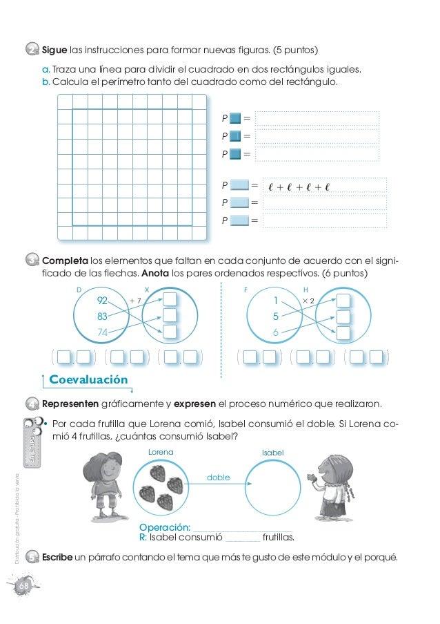 Cuaderno de trabajo matemática cuarto año
