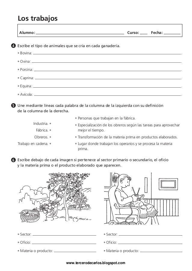 Cuaderno vacaciones ciencias_3.1