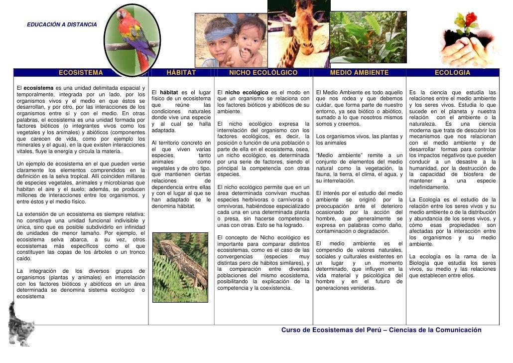 EDUCACIÓN A DISTANCIA                       ECOSISTEMA                                     HÁBITAT                     NIC...