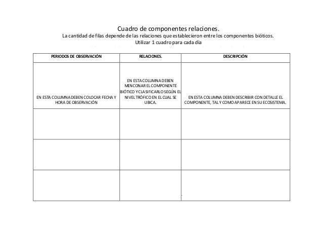 ESTRUCTURA Y CUADROS DEL TRABAJO DE CAMPO