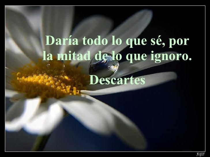 Daría todo lo que sé, por la mitad de lo que ignoro. Descartes