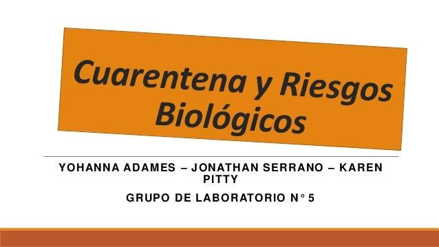 YOHANNA ADAMES – JONATHAN SERRANO – KAREN PITTY GRUPO DE LABORATORIO N° 5