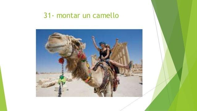 31- montar un camello