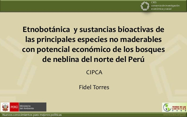 CIES consorcio de investigación económica y social  Etnobotánica y sustancias bioactivas de las principales especies no ma...