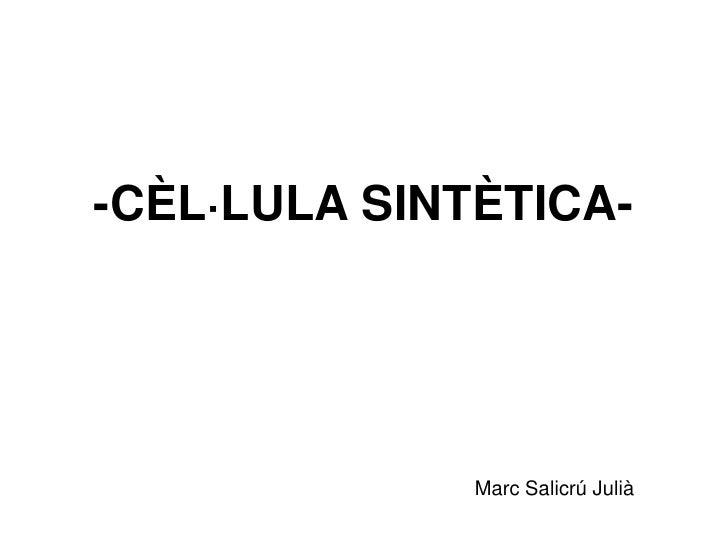 -CÈL·LULA SINTÈTICA-<br />Marc Salicrú Julià<br />