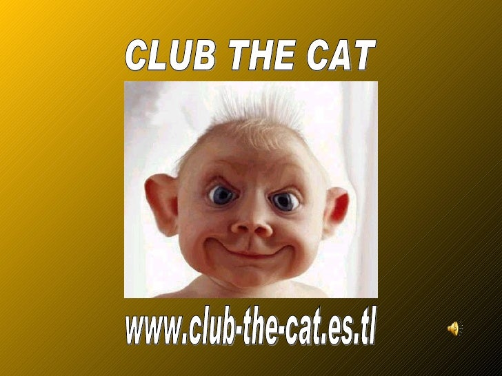 www.club-the-cat.es.tl CLUB THE CAT