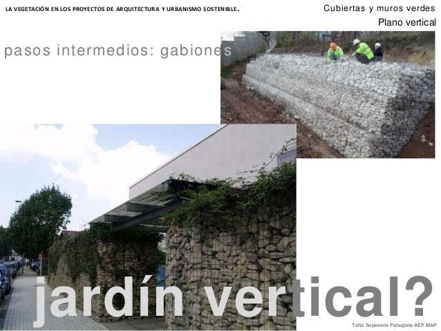 Cubiertas y muros verdes for Materiales para un muro verde