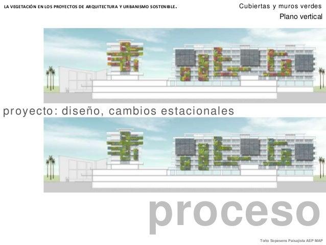 Cubiertas y muros verdes for Diseno de muros verdes