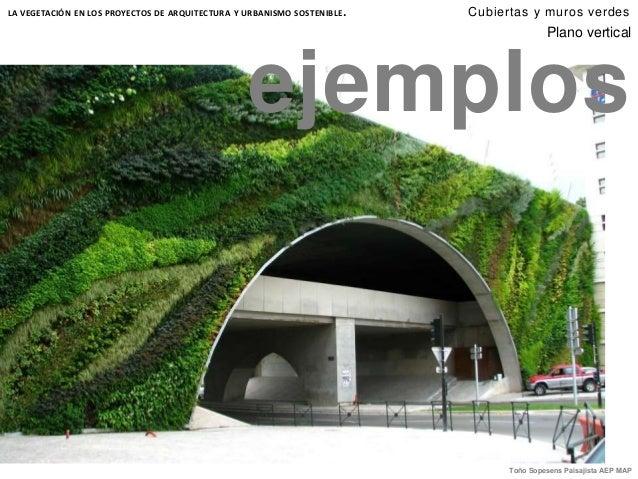 Cubiertas y muros verdes for Muros verdes arquitectura