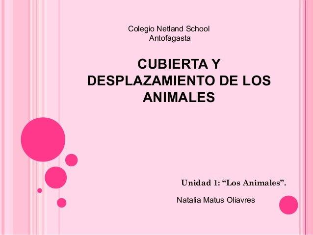 """CUBIERTA YDESPLAZAMIENTO DE LOSANIMALESUnidad 1: """"Los Animales"""".Colegio Netland SchoolAntofagastaNatalia Matus Oliavres"""