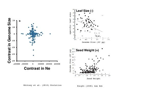 Seed Weight (+) Leaf Size (-) Knight (2005) Ann Bot Genome Size (2C pg) Seed Weight GenomeSize(2Cpg)specificleafarea Whitn...