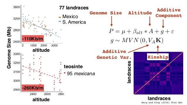 Rosado et al. (2005) Maize Genetics Newsletter (shh, secret) Knob180 KnobTR1 Maize TEs Sorghum TEs Jiao et al. (2017) Natu...