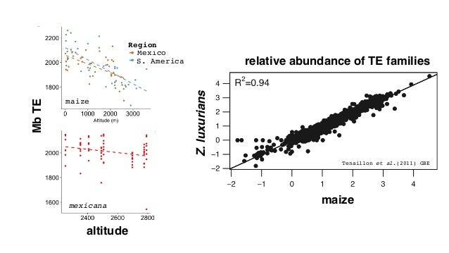 results: total, among TEs, B Knobabundance(Mb) altitude knob180 maize mexicana maize mexicana S. Am. Mexico Region knobTR1
