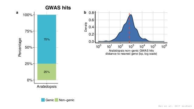 25% 75% 78% 22% 0% 25% 50% 75% 100% Arabidopsis Maize Species Percentage Genic Non−genic a 0.0 0.2 0.4 0.6 0.8 100 101 102...