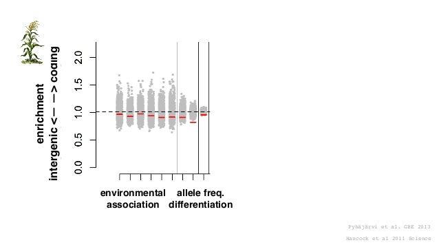 Pyhäjärvi et al. GBE 2013 enrichment intergenic<——>coding Hancock et al 2011 Science enrichment no<———>yes intergenic syno...