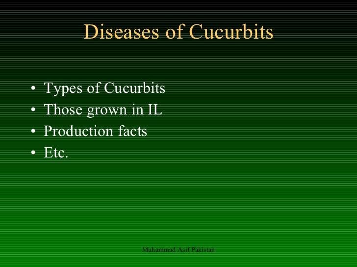 Diseases of Cucurbits <ul><li>Types of Cucurbits </li></ul><ul><li>Those grown in IL </li></ul><ul><li>Production facts </...