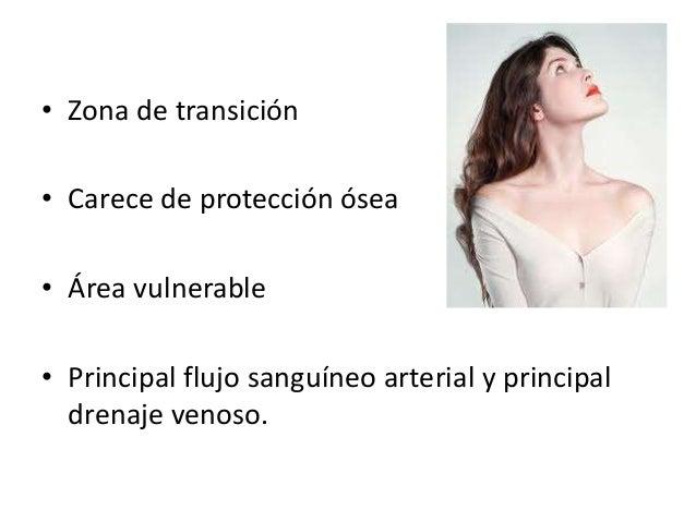 Cuello cirugia  Slide 2