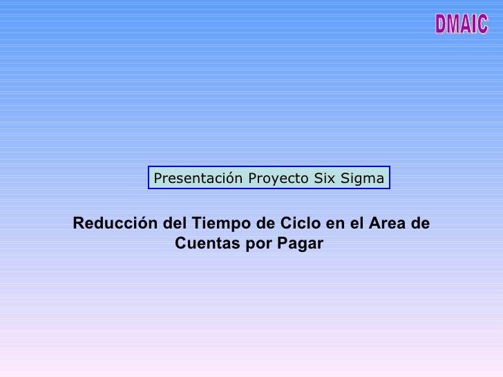 Cuentas X Pagar Optimizado con Seig Sigma