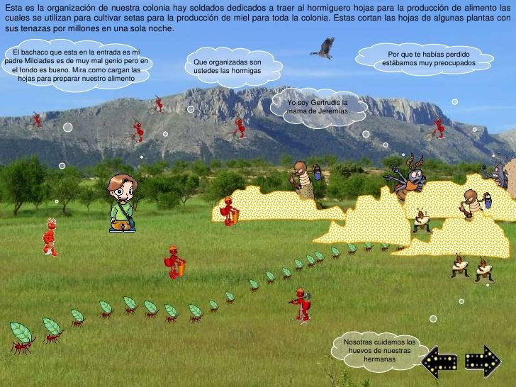 Esta es la organización de nuestra colonia hay soldados dedicados a traer al hormiguero hojas para la producción de alimen...