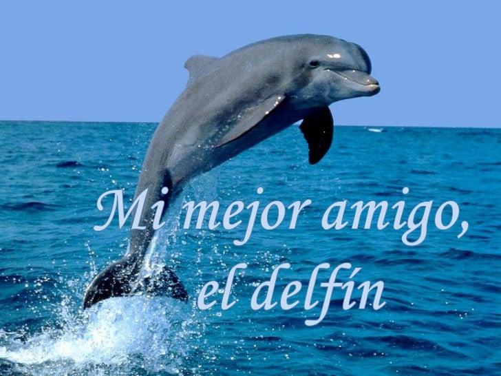 Mi mejor amigo, <br />el delfín<br />