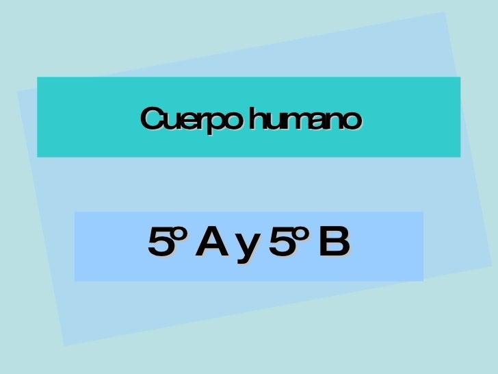 Cuerpo humano 5º A y 5º B