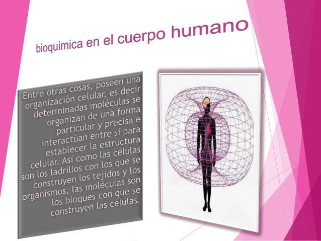   El cuerpo humano esta compuesto, al menos, por unos 60 elementos químicos diferentes, muchos de los cuales se desconoce...