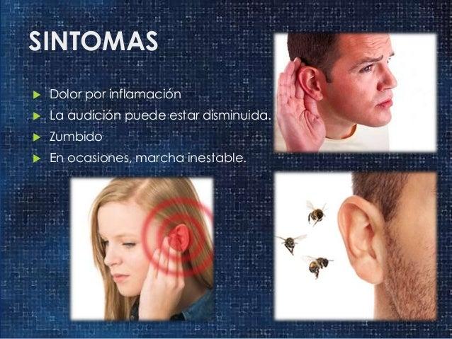 Resultado de imagen de insectos en los oidos