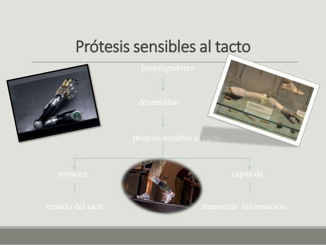Cuerpos biónicos Slide 2