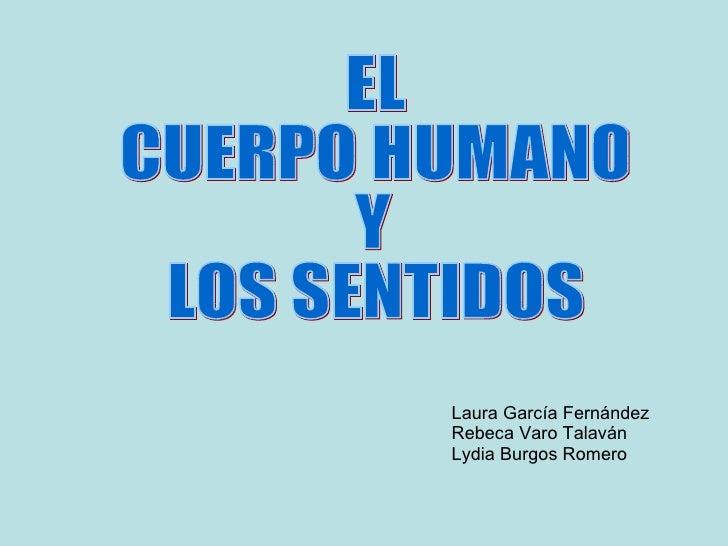 EL  CUERPO HUMANO Y  LOS SENTIDOS Laura García Fernández Rebeca Varo Talaván Lydia Burgos Romero